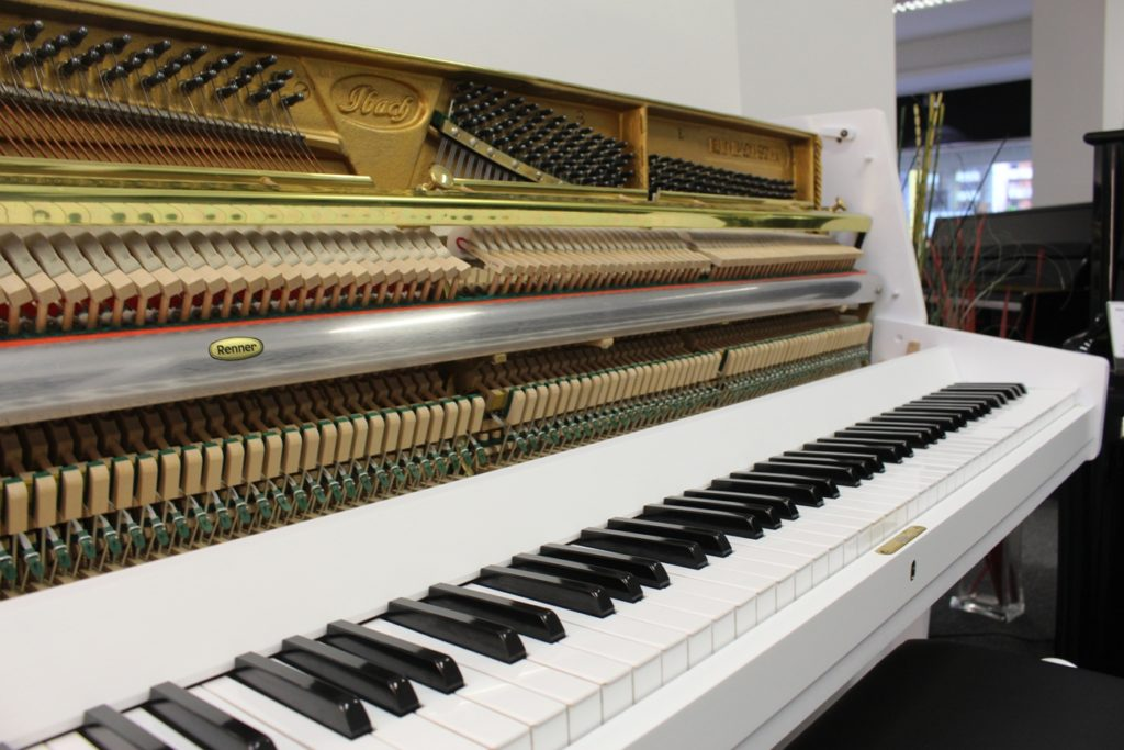 Ibach Klavier PianoZifreind